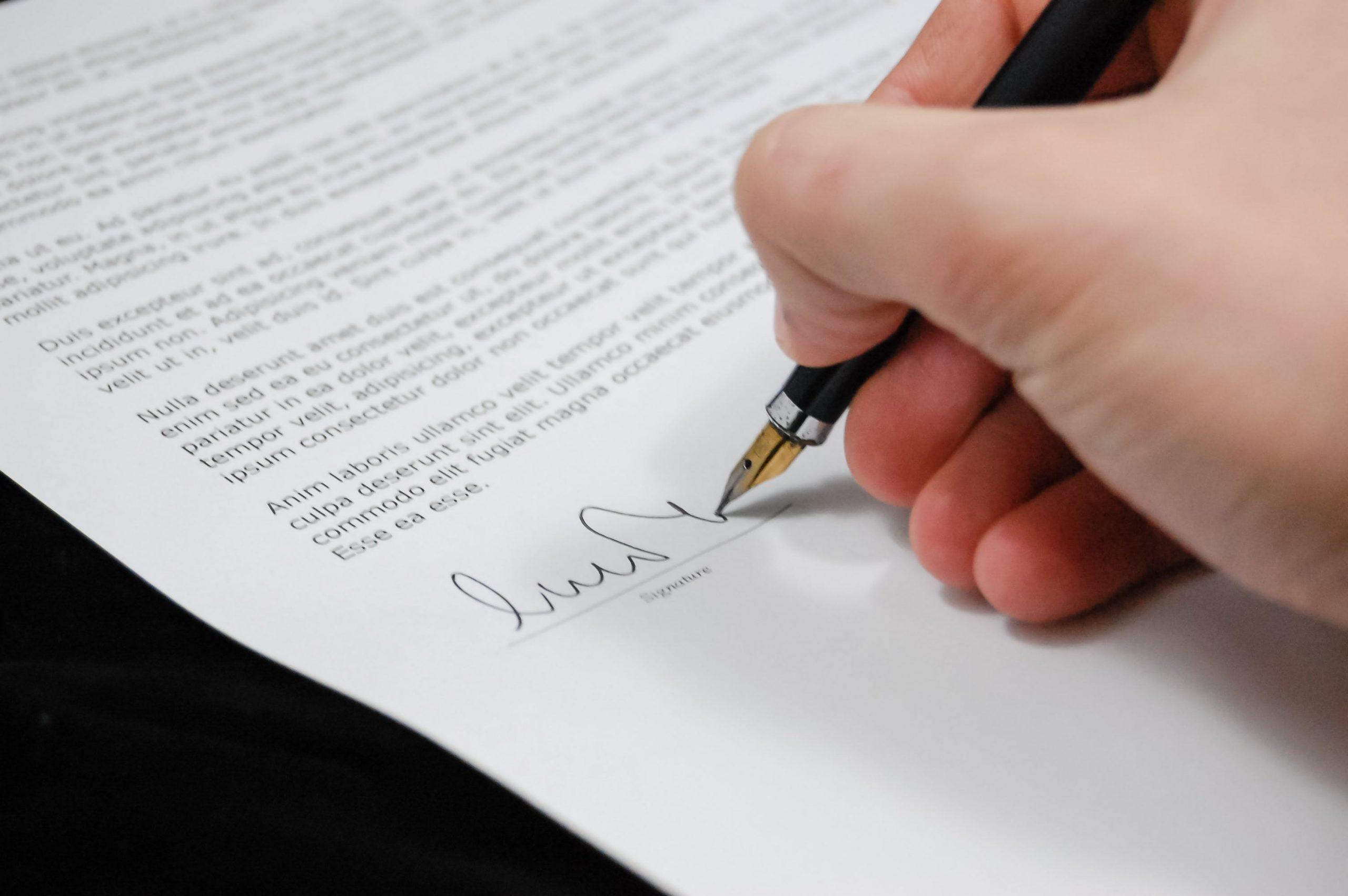 law essay paper